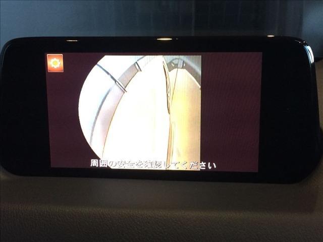 2.2 XD Lパッケージ ディーゼルターボ ナビ・サイド&(6枚目)