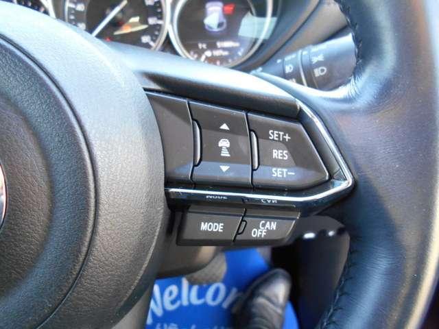2.2 XD Lパッケージ ディーゼルターボ 4WD ワンオーナー ETC BOSE サポカー補助金4万円対象車(9枚目)
