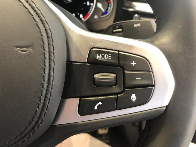 523d xDrive Mスピリット 弊社デモカー アクティブクルーズコントロール タッチパネル式HDDナビ 18インチアルミホイール 認定保証(20枚目)