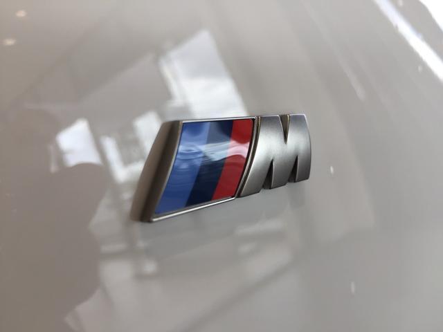 M340i xDrive ブラックレザーシート 純正19インチアルミホイール パーキングアシストプラス 衝突被害軽減ブレーキ レーザーライト 認定保証 全周囲カメラ 後退アシスト コンフォートアクセス ヘッドアップディスプレイ(48枚目)