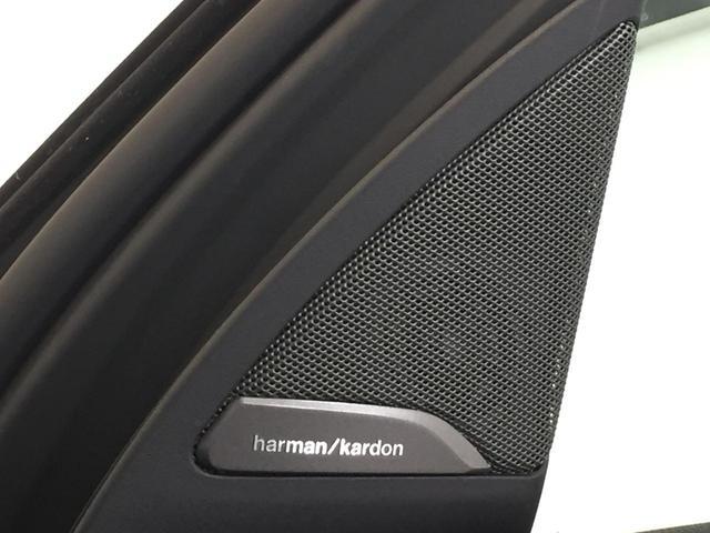 xDrive 30i Mスポーツ ブラックレザーシート シートヒーター ハーマンカードンスピーカー 電動ガラスサンルーフ ヘッドアップディスプレイ ディスプレイキー 衝突軽減ブレーキ 全周囲カメラ 前後PDC フルセグTV(40枚目)
