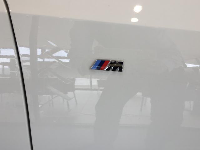 320d xDrive Mスポーツ パーキングサポート+ コンフォートパッケージ Mパフォーマンスパーツ オプション19インチアルミホイール 純正HDDナビ ワンオーナー 禁煙車 全周囲カメラ 電動リアゲート センサテックコンビシート(29枚目)