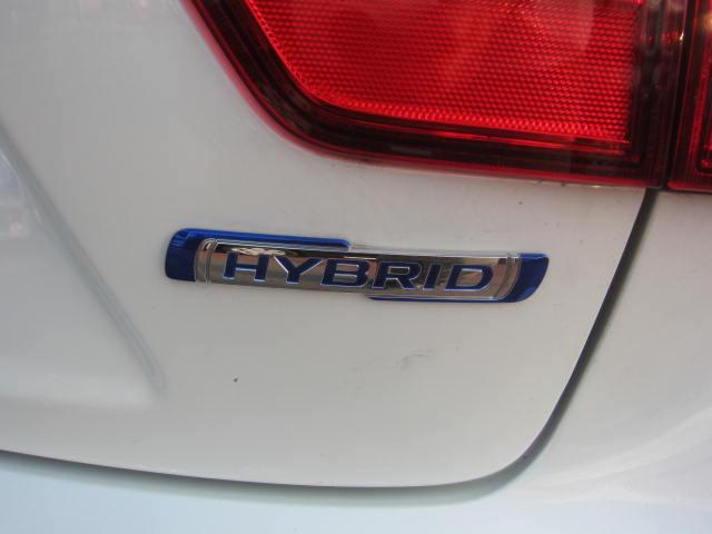 HYBRID Fリミテッド(16枚目)