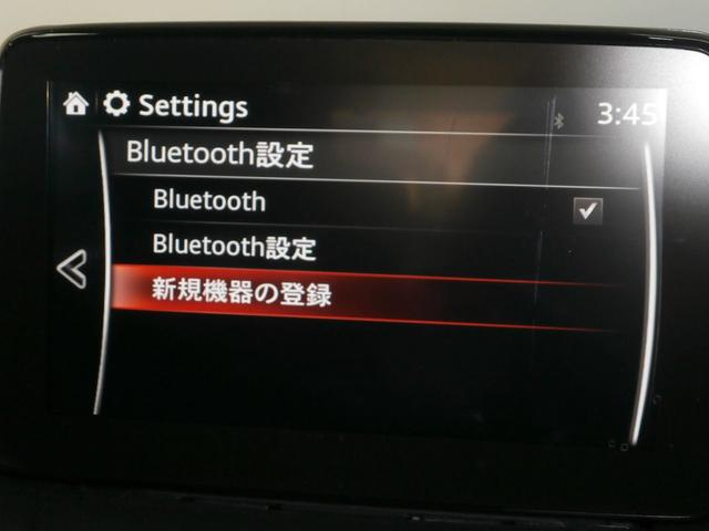 13Sツーリング ワンオーナー 360度モニター  アダプティブLEDヘッドライト シートヒーター(34枚目)