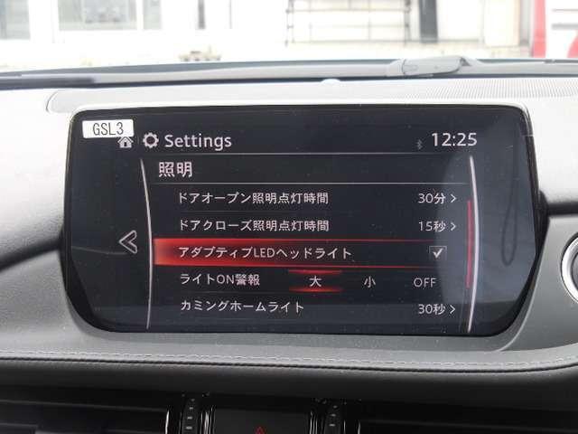 XD L-PKG 当社試乗車UP(16枚目)