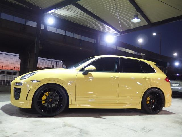 S ハイブリッド EUR-GTエアロ ES22inアルミ(8枚目)