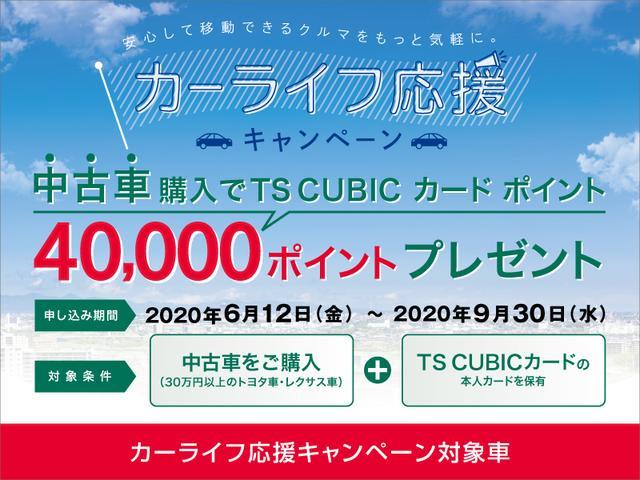 プレミアム メタル アンド レザーパッケージ トヨタ認定中古車(38枚目)
