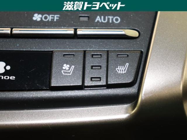 NX300 バージョンL 革シート フルセグ メモリーナビ DVD再生 ミュージックプレイヤー接続可 バックカメラ 衝突被害軽減システム ETC ドラレコ LEDヘッドランプ ワンオーナー 記録簿 アイドリングストップ(17枚目)