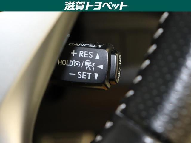 250S サンルーフ フルセグ メモリーナビ DVD再生 ミュージックプレイヤー接続可 バックカメラ 衝突被害軽減システム ETC LEDヘッドランプ ワンオーナー(17枚目)