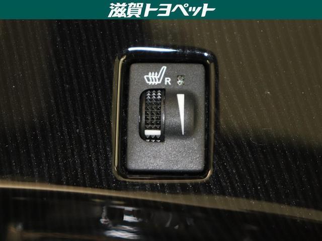 250S サンルーフ フルセグ メモリーナビ DVD再生 ミュージックプレイヤー接続可 バックカメラ 衝突被害軽減システム ETC LEDヘッドランプ ワンオーナー(19枚目)