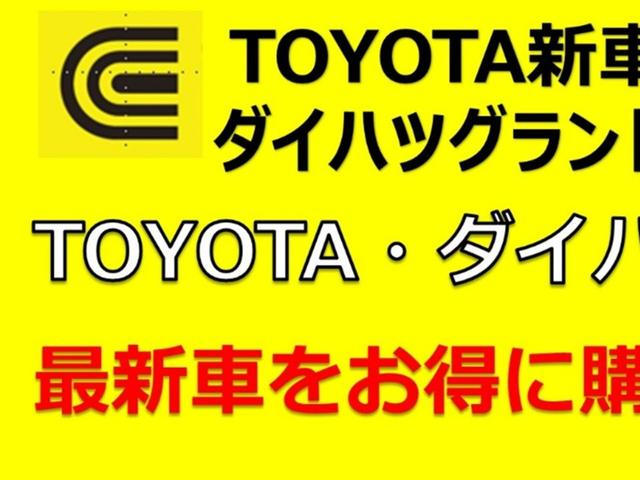 TZ-G マイナーチェンジ後 セレクトオプション(2枚目)