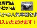カスタムG SAII セレクトオプション(3枚目)