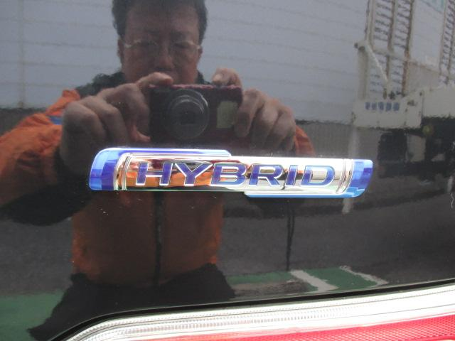 HYBRID FZ(21枚目)