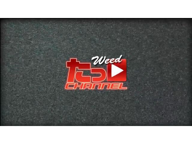 トヨタ ハイエースバン BKスタイル ナビ ETC Bカメラ ベッドキット