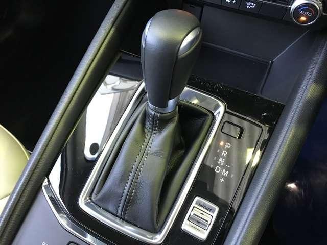 25S シルクベージュセレクション 2.5 25S シルクベージュ セレクション 4WD 試乗車UP サポカー補助金4万円対象車(11枚目)