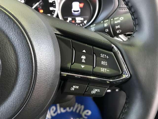 25S シルクベージュセレクション 2.5 25S シルクベージュ セレクション 4WD 試乗車UP サポカー補助金4万円対象車(13枚目)