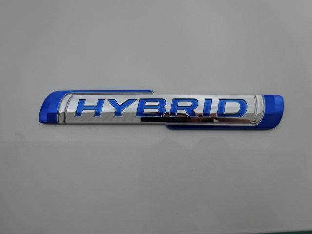 スティングレー HYBRID X(16枚目)
