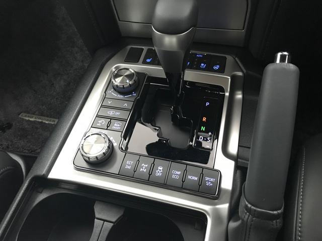 ZX  WALD仕様(12枚目)