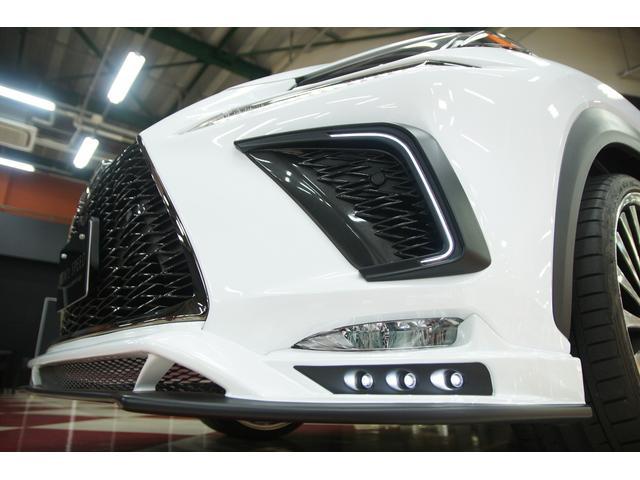 NX300 Fスポーツ ムーンルーフ M'zコンプリートカー(4枚目)