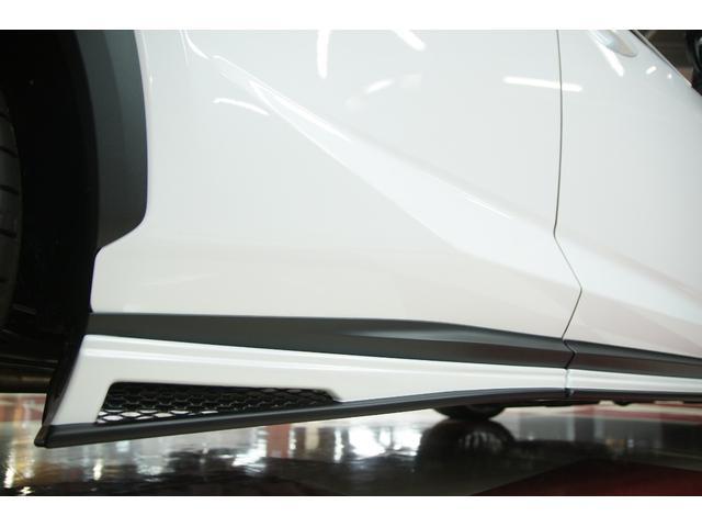 NX300 Fスポーツ ムーンルーフ M'zコンプリートカー(16枚目)