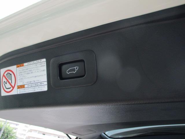 2.5S タイプゴールド パワーバックドア 特別仕様車(20枚目)