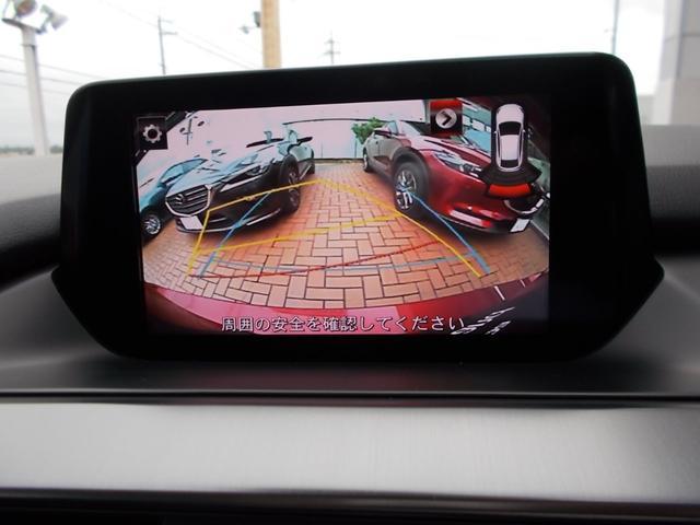 6MT XDプロアクティブ ナビTVバックカメラ(12枚目)