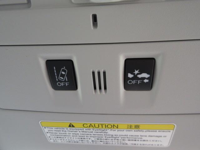 S-リミテッド フルセグナビ バックカメラ ETC マット(16枚目)