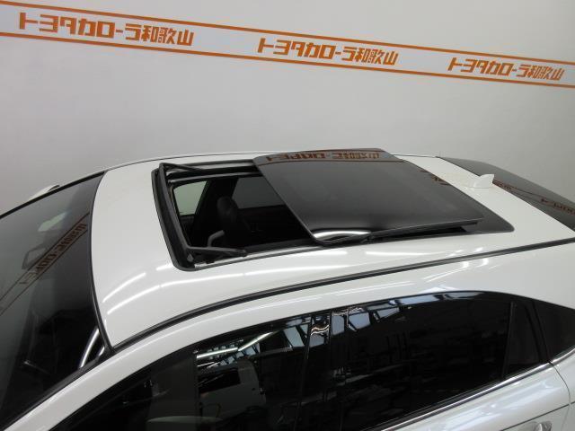 エレガンス GRスポーツ フルセグ メモリーナビ DVD再生 バックカメラ 衝突被害軽減システム ETC LEDヘッドランプ アイドリングストップ(17枚目)
