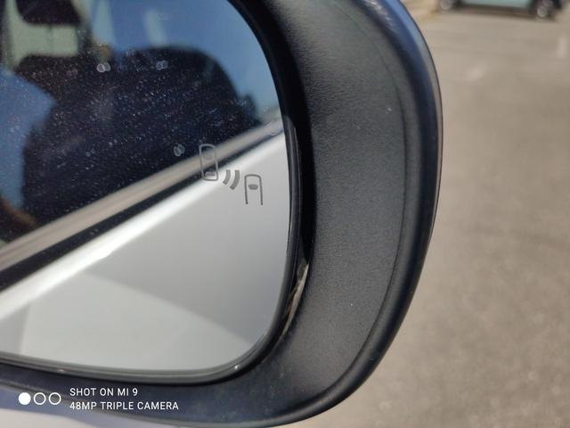 Z LEDヘッドライト・LEDフォグライト・9インチナビ・全方位カメラ・ブラインドスポットモニター・レーダー探知機・ドライブレコーダー・ETC・ワンオーナー(27枚目)
