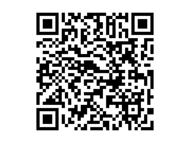 ライダーS 純正ナビ 後席モニタ ーBカメラ 左パワスラ(5枚目)