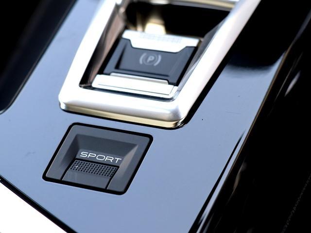 アリュール パノラミックサンルーフ AppleCarPlay対応ディスプレイ バック/サイドカメラ 全車速ACC アクティブセーフティブレーキ BSM LEDオート 前後ドラレコ Pバックドア 純正AW 禁煙車(33枚目)