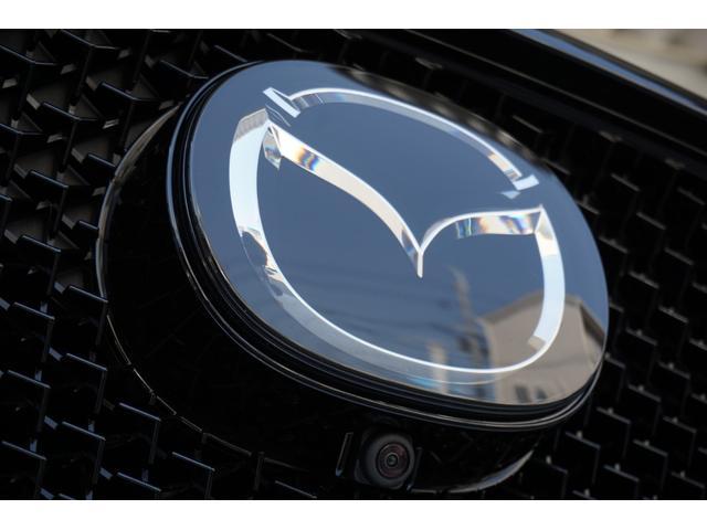 XDプロアクティブ 19インチ マルチビュー BOSE 新車(13枚目)