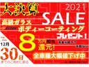 RS・10thアニバーサリー SSDナビ HID パドルS(2枚目)