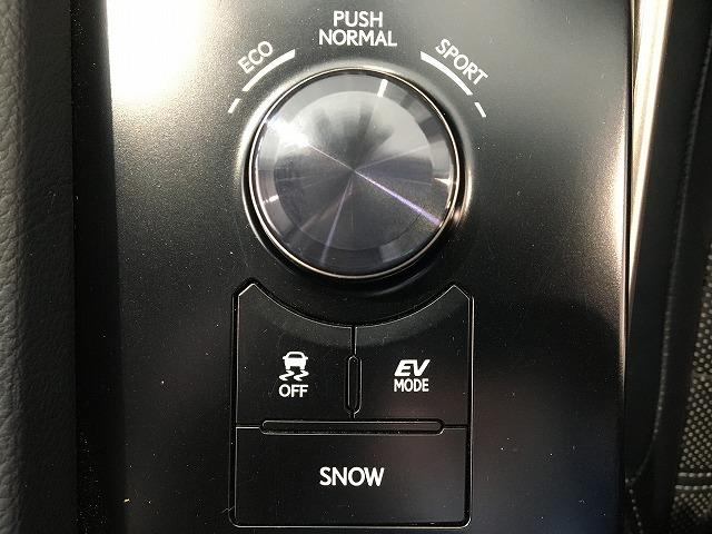 IS300h バージョンL 禁煙車 プリクラッシュS レーダークルーズ クリアランスソナー 黒本革シート シートヒーター&エアコン 電動リアサンシェード パドルシフト 純正SDナビ バックカメラ 純正18インチAW(67枚目)