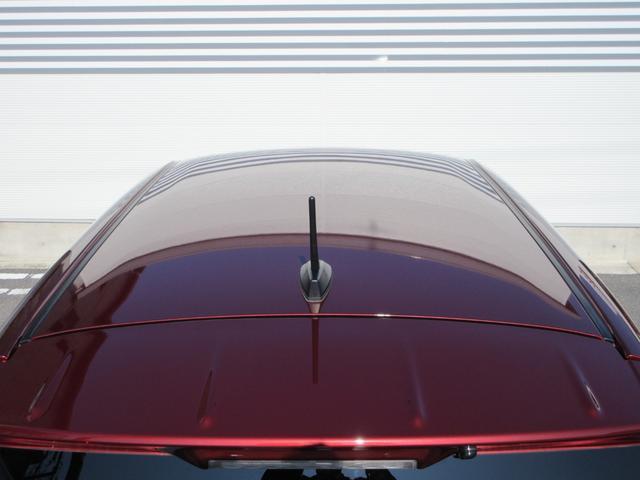 スタイルGリミテッド SA3 パノラマ対応 LEDヘッド(30枚目)
