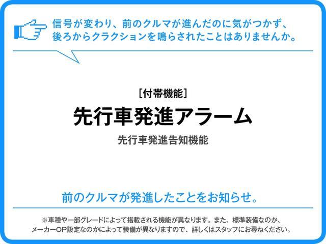 スタイルG SAII(31枚目)