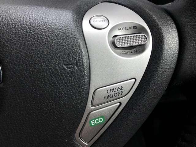 30kWh X エアロスタイル サンクス エディション 衝突被害軽減ブレーキ&LEDヘッドライト(10枚目)