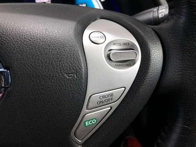 30kWh X 衝突被害軽減ブレーキ&前席シートヒーター(10枚目)