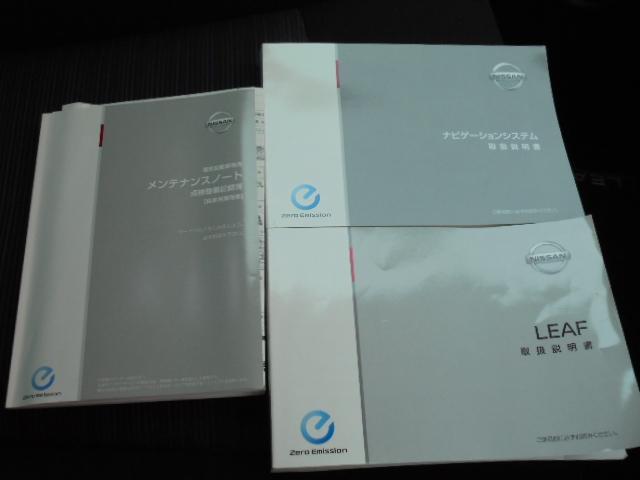 G プロパイロット&EV専用ナビ・全周囲カメラ付(12枚目)