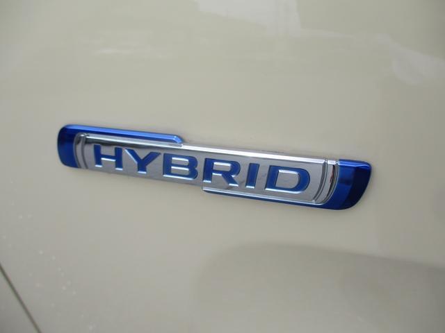 HYBRID G(38枚目)
