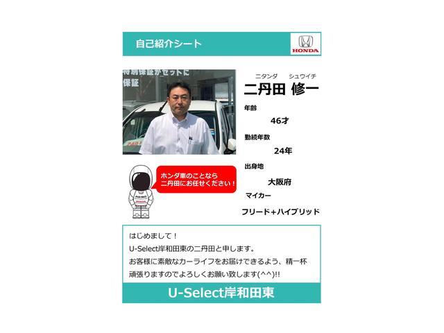 G・Lパッケージ 外品ナビ Rカメラ ETC パワースライド(56枚目)