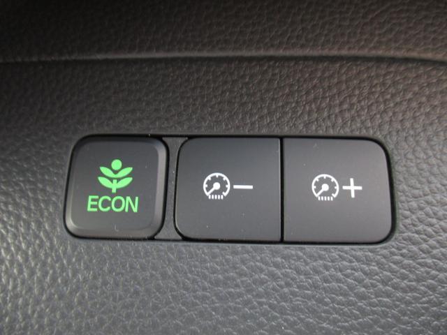 G・EX オーディオレス ETC LED 衝突軽減 ETC Rカメラ 両側電動ドア(40枚目)