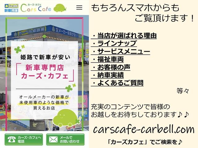 L フルセグTV対応高精細ナビバックカメラETCマット付(22枚目)