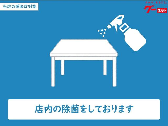 L フルセグTV対応高精細ナビバックカメラETCマット付(23枚目)