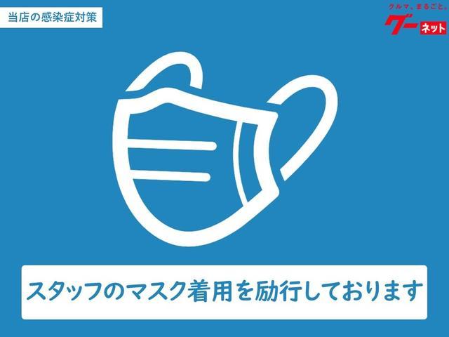 L フルセグTV対応高精細ナビバックカメラETCマット付(24枚目)