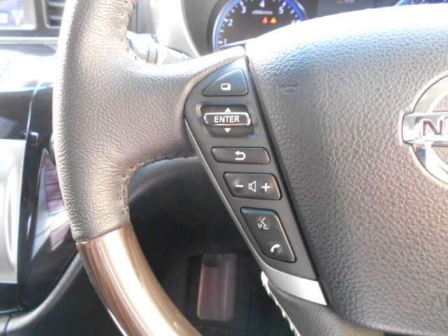 2.5 250ハイウェイスターS アーバンクロム HDDナビ 盗難防止システム アラウンドビューM スマートキー ワンオ-ナ-車 両側自動ドア クルコン ドラレコ バックカメラ(12枚目)