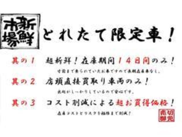 XG 14日間限定販売車(15枚目)