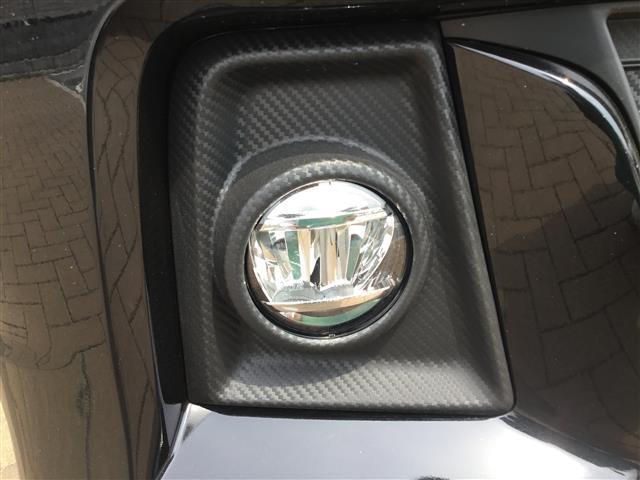 HYBRID X 全方位カメラ セーフティ(9枚目)