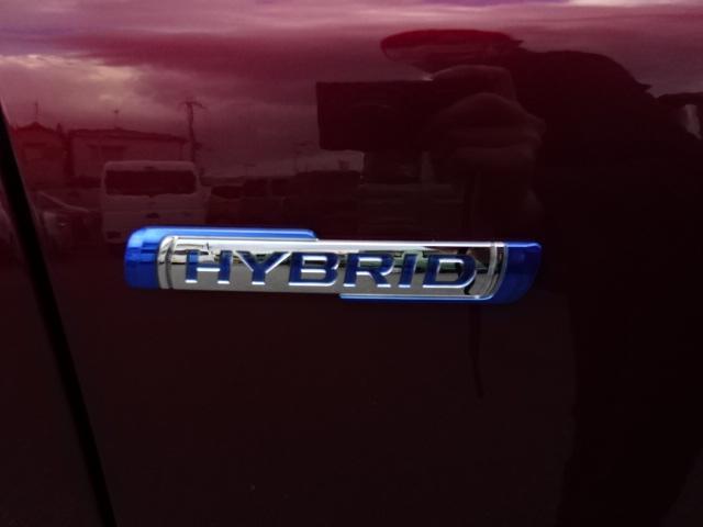 HYBRID MZ(22枚目)