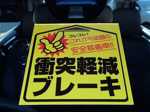 G・Aパッケージ 純正用品メモリーナビ ETC Rカメラ(17枚目)